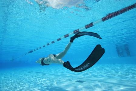 「Free diving DYN」の画像検索結果